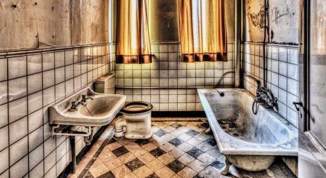 Плесень в ванной – как избавиться? Средства от плесени