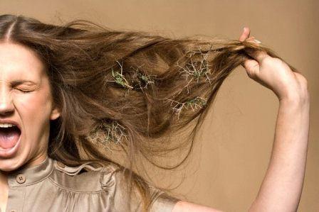Лечение волос у женщин народными средствами thumbnail