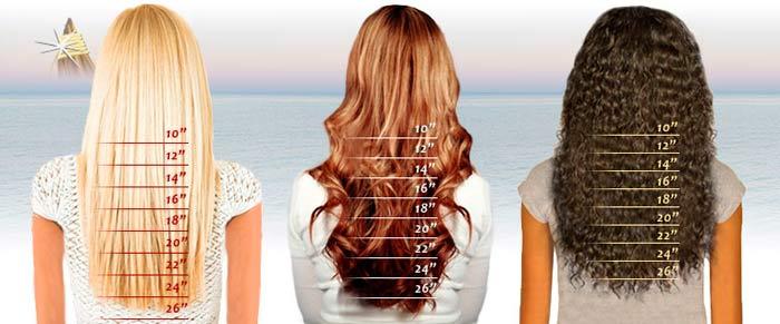 Типы цветов волос