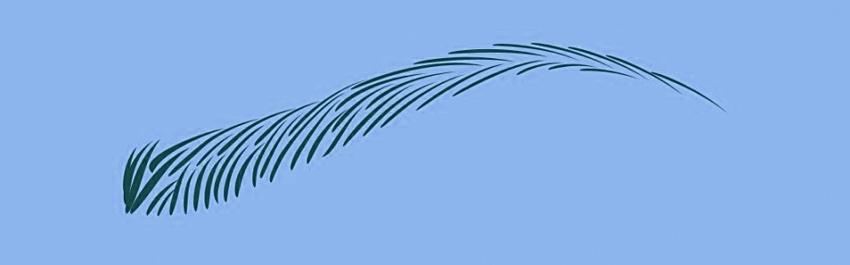 Волосковый татуаж бровей: суть процедуры