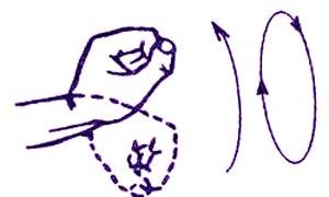 Комплекс упражнений для рук
